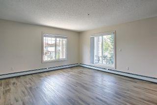 Photo 24: 201 4407 23 Street in Edmonton: Zone 30 Condo for sale : MLS®# E4254389