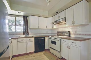 Photo 11: 10443 Wapiti Drive SE in Calgary: Willow Park Detached for sale : MLS®# A1128951