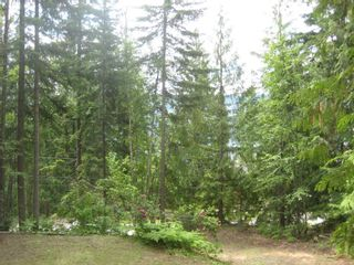 Photo 5: 12 Stampede Trail in Anglemont: Land Only for sale : MLS®# 10031134