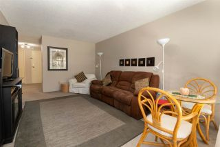 Photo 6: 128 8460 ACKROYD Road in Richmond: Brighouse Condo for sale : MLS®# R2569217