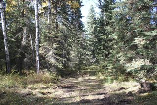 Photo 32: ON Township Road 355A: Rural Red Deer County Land for sale : MLS®# A1039276