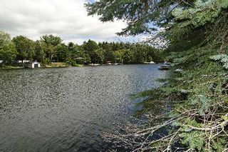 Photo 4: 10 Birch Court in Kawartha Lakes: Rural Eldon Property for sale : MLS®# X2715446