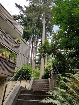 """Photo 24: 54 1825 PURCELL Way in North Vancouver: Lynnmour Condo for sale in """"LYNNMOUR SOUTH"""" : MLS®# R2569796"""