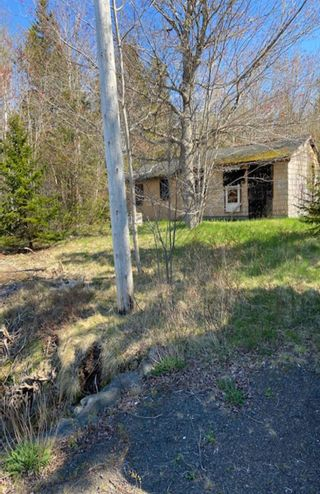 Photo 5: 12078 HIGHWAY 217 in Sea Brook: 401-Digby County Vacant Land for sale (Annapolis Valley)  : MLS®# 202111919