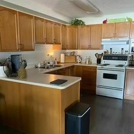 Photo 2: 107 15499 CASTLE_DOWNS Road in Edmonton: Zone 27 Condo for sale : MLS®# E4248687
