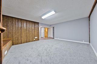 Photo 22: 1244 Falconridge Drive NE in Calgary: Falconridge Detached for sale : MLS®# A1067317