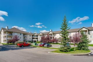 Photo 30: 107 3000 Citadel Meadow Point NW in Calgary: Citadel Apartment for sale : MLS®# A1070603
