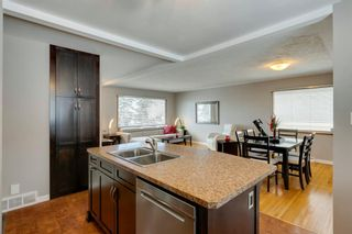Photo 15: 1444 16 Street NE in Calgary: Mayland Heights Detached for sale : MLS®# A1074923