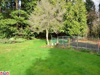 Photo 4: 5844 132ND Street in Surrey: Panorama Ridge House for sale : MLS®# F1206809
