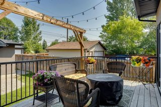 Photo 11: 452 18 Avenue NE in Calgary: Winston Heights/Mountview Semi Detached for sale : MLS®# A1130830