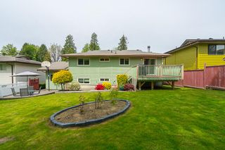 Photo 19: 35386 WELLS GRAY Avenue in Abbotsford: Abbotsford East House for sale : MLS®# R2164602