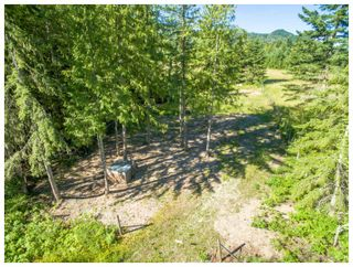 Photo 46: 4902 Parker Road in Eagle Bay: Vacant Land for sale : MLS®# 10132680