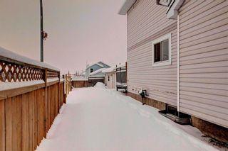 Photo 33: 254 SARATOGA Close NE in Calgary: Monterey Park House for sale : MLS®# C4165371