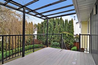 Photo 22: 9224 213 Street in Langley: Walnut Grove House for sale : MLS®# R2535803