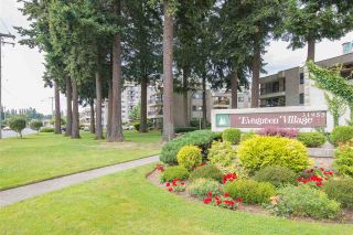 "Photo 1: 804 31955 OLD YALE Road in Abbotsford: Abbotsford West Condo for sale in ""EVERGREEN VILLAGE"" : MLS®# R2090402"