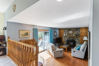 Photo 13: 31 Mchugh Place NE in Calgary: Mayland Heights Detached for sale : MLS®# A1111155