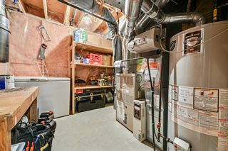 Photo 38: 92 Sandringham Close in Calgary: Sandstone Valley Detached for sale : MLS®# A1146191