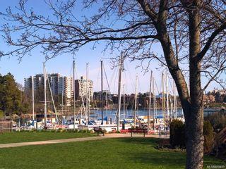 Photo 6: 211 916 Lyall St in : Es Esquimalt Condo for sale (Esquimalt)  : MLS®# 878433