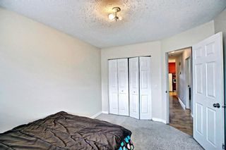 Photo 21: 1137 Berkley Drive NW in Calgary: Beddington Heights Semi Detached for sale : MLS®# A1136717