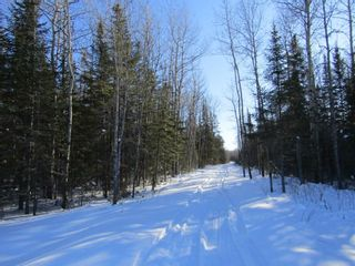 Photo 7: Heward Rd. in Fort Frances: Vacant Land for sale : MLS®# TB200316