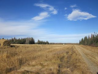 Photo 2: NE 13-54 Range Road 130: Niton Junction Rural Land for sale (Edson)  : MLS®# 32591