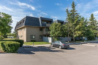 Photo 24: 2308 3115 51 Street SW in Calgary: Glenbrook Apartment for sale : MLS®# A1024636