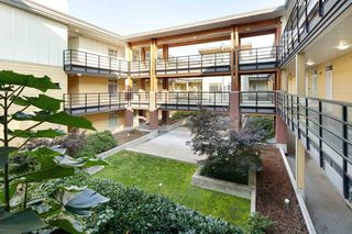 Photo 3: 327 5288 GRIMMER STREET in Burnaby: Metrotown Condo for sale (Burnaby South)  : MLS®# R2504878