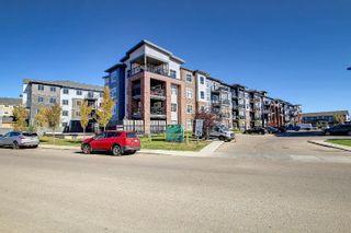 Photo 34: 312 5510 SCHONSEE Drive in Edmonton: Zone 28 Condo for sale : MLS®# E4265102