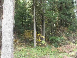 Photo 10: 65457 NORTON Road in Hope: Hope Center Land for sale : MLS®# R2545693