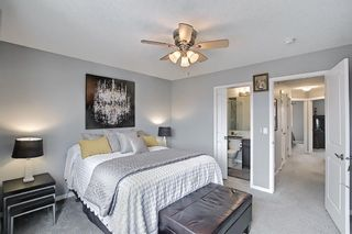 Photo 29: 139 Howse Lane NE in Calgary: Livingston Detached for sale : MLS®# A1118949