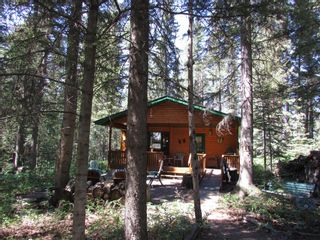 Photo 6: 6 Coyote Cove: Rural Mountain View County Detached for sale : MLS®# A1124823
