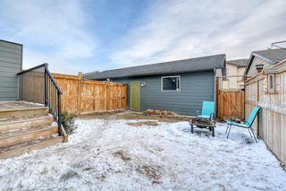 Photo 43: 675 Walden Drive in Calgary: Walden Semi Detached for sale : MLS®# A1085859