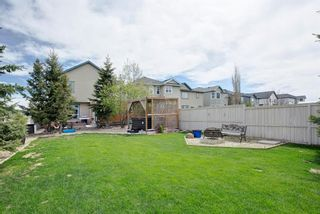 Photo 31: 50 Martha's Place NE in Calgary: Martindale Detached for sale : MLS®# A1119083