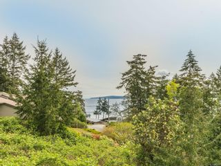 Photo 59: 3339 Stephenson Point Rd in : Na Departure Bay House for sale (Nanaimo)  : MLS®# 874392