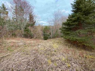 Photo 18: Sherbrooke Road in Greenvale: 108-Rural Pictou County Vacant Land for sale (Northern Region)  : MLS®# 202111683