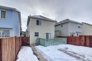 Photo 41: 208 Taradale Drive NE in Calgary: Taradale Detached for sale : MLS®# A1067291