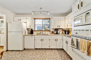 Photo 19: 6740 34 Avenue NE in Calgary: Temple Detached for sale : MLS®# A1121100