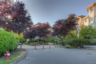 Photo 28: 309 490 Marsett Pl in VICTORIA: SW Royal Oak Condo for sale (Saanich West)  : MLS®# 822080
