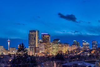 Photo 6: 1005 Drury Avenue NE in Calgary: Bridgeland/Riverside Detached for sale : MLS®# A1121574
