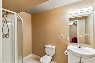 Photo 36: 40 Coral Reef Bay NE in Calgary: Coral Springs Detached for sale : MLS®# A1118339