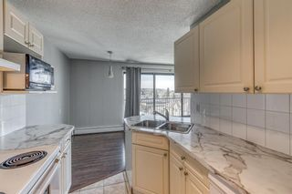 Photo 11: 502 1330 15 Avenue SW in Calgary: Beltline Apartment for sale : MLS®# A1110704
