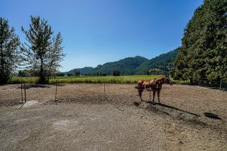 Photo 9: 39039 NORTH PARALLEL Road in Abbotsford: Sumas Prairie House for sale : MLS®# R2602841