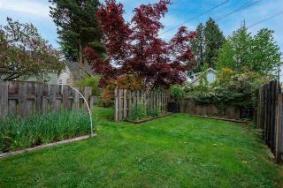 Photo 37: 7849 BIRCH STREET in Vancouver: Marpole House for sale (Vancouver West)  : MLS®# R2574973