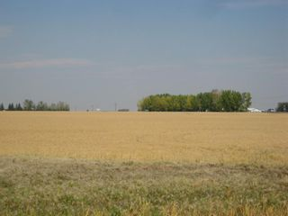 Photo 5: SE 20 30 1 W5 Highway 2A: Carstairs Residential Land for sale : MLS®# A1067588