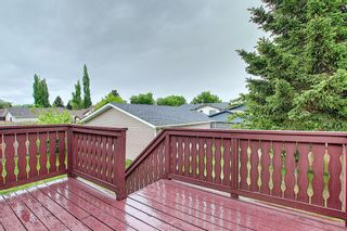 Photo 43: 155 Templevale Road NE in Calgary: Temple Detached for sale : MLS®# A1119165