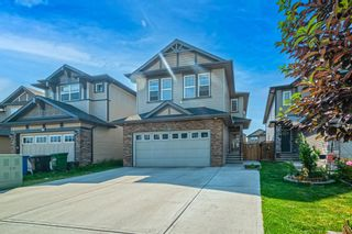 Photo 32: 31 SKYVIEW SHORES Link in Calgary: Skyview Ranch Detached for sale : MLS®# A1130937