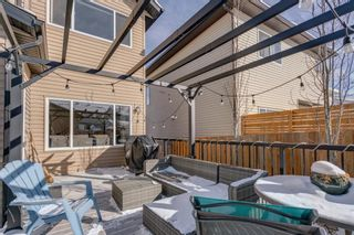 Photo 46: 119 ELGIN MEADOWS Way SE in Calgary: McKenzie Towne Detached for sale : MLS®# A1067731