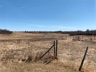 Photo 12: 42540A HWY 13: Rural Flagstaff County House for sale : MLS®# E4237916