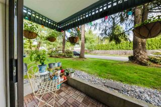 """Photo 19: 207 601 NORTH Road in Coquitlam: Coquitlam West Condo for sale in """"Wolverton"""" : MLS®# R2579384"""