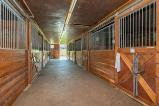 Photo 6: 348536 15 Sideroad in Mono: Rural Mono Property for sale : MLS®# X4465634
